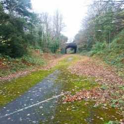 Could we have a temporary Brislington Tramway railway path?